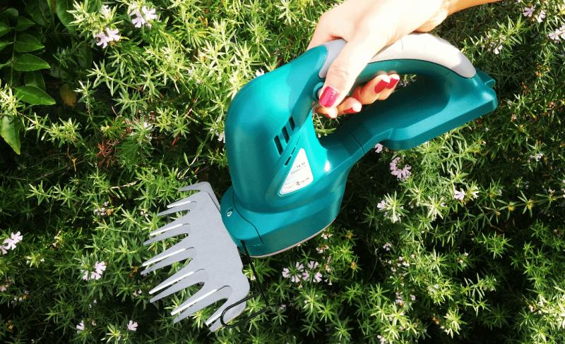 生い茂る緑に。庭手入れおすすめ道具をご紹介!