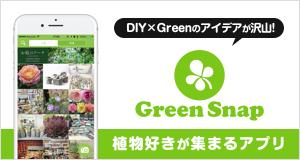 植物好きが集まるアプリ GreenSnap